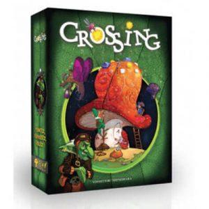 Crossing-33